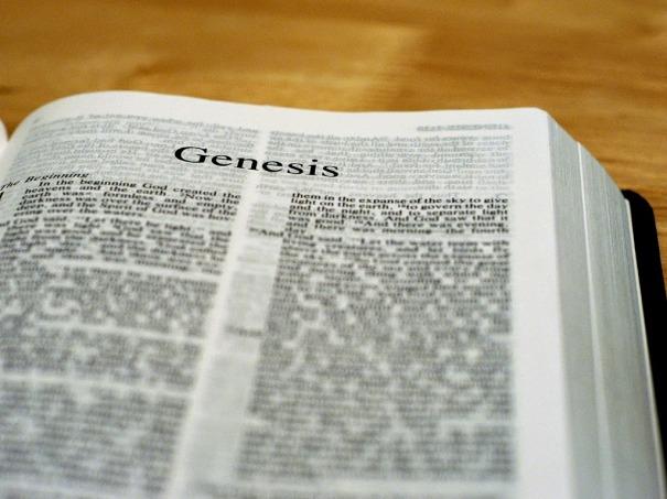 Resultado de imagem para Gênesis